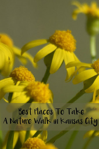 Best Places To Take A Nature Walk in Kansas City