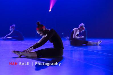 Han Balk Voorster Dansdag 2016-4996-2.jpg