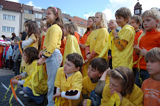 sun audience