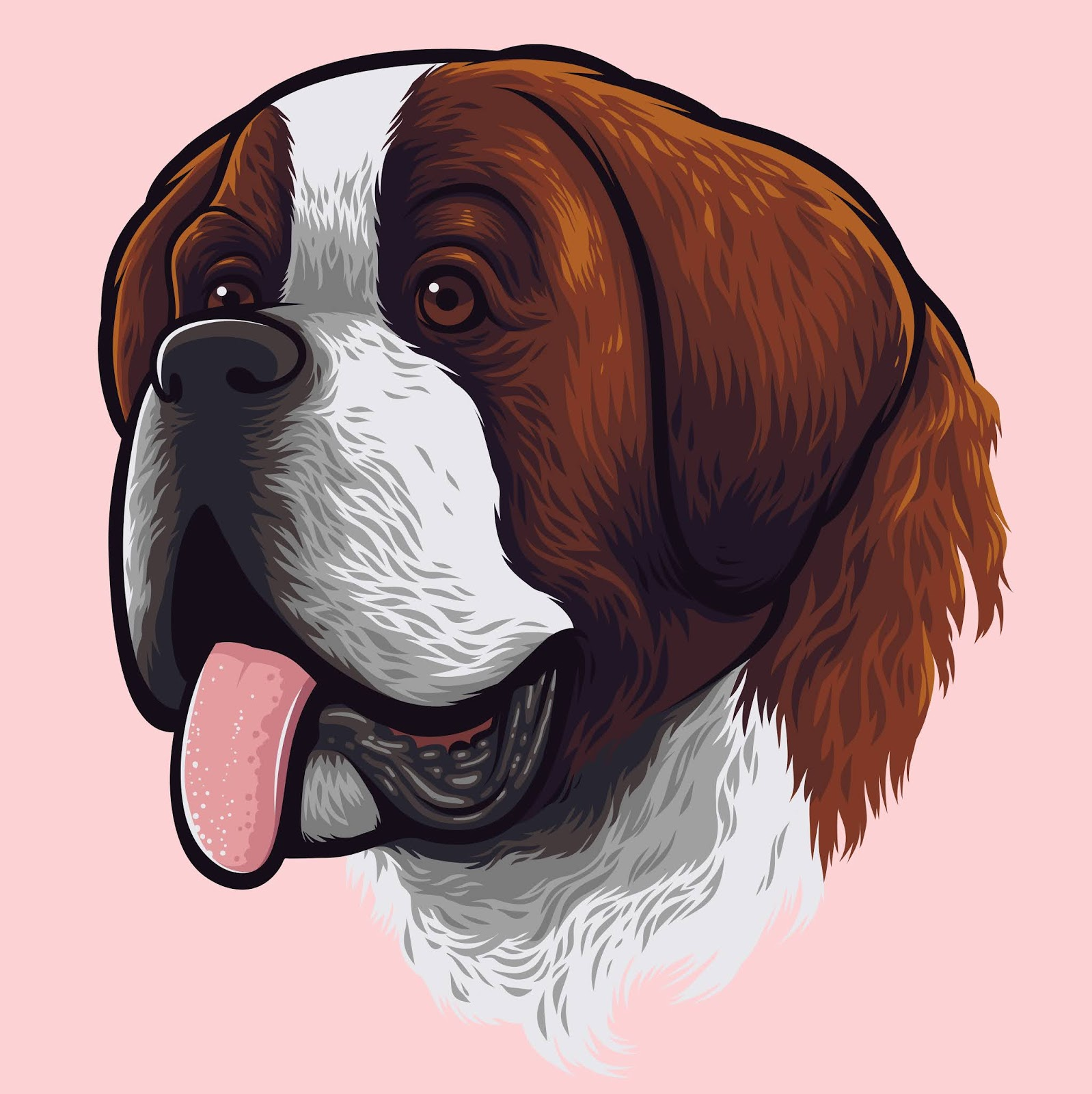 Saint Bernard Dog Portrait Free Download Vector CDR, AI, EPS and PNG Formats
