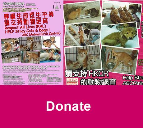 donation leaflet