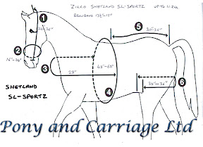 Carriage Driving Horse Harness Zilco SL Sportz Shetland
