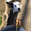 Aubrey Sabre's profile photo