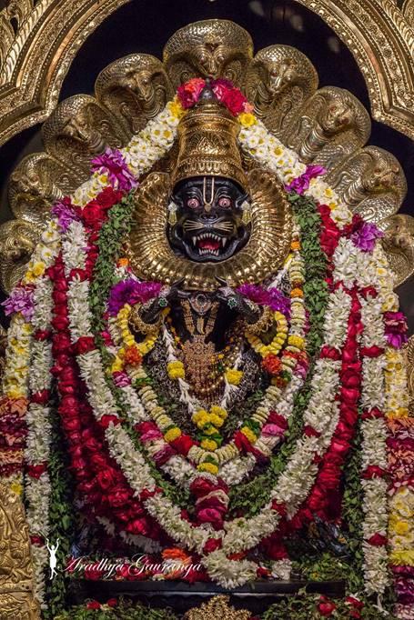 ISKCON Mayapur Deity Darshan 01 Mar 2016 (38)