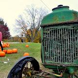 Pumpkin Picking - Fall '10