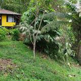 Le lodge Tunda Loma (Calderon, Esmeraldas), 7 décembre 2013. Photo : J.-M. Gayman