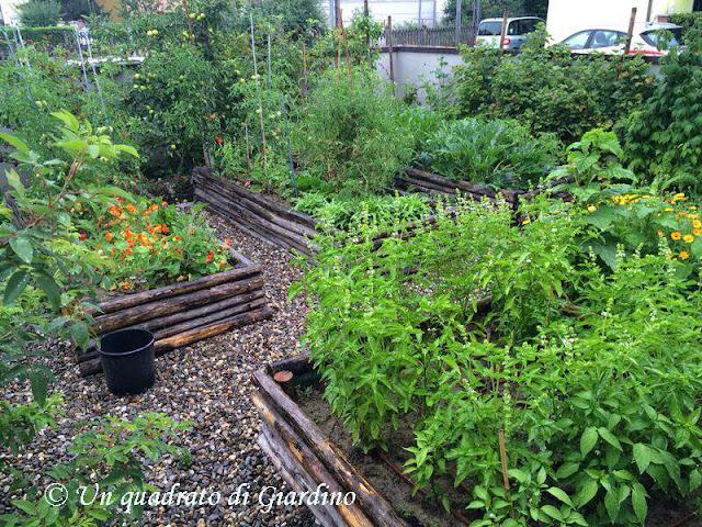 Costruire un orto rialzato cassoni vasche per orto for Vasche per giardino