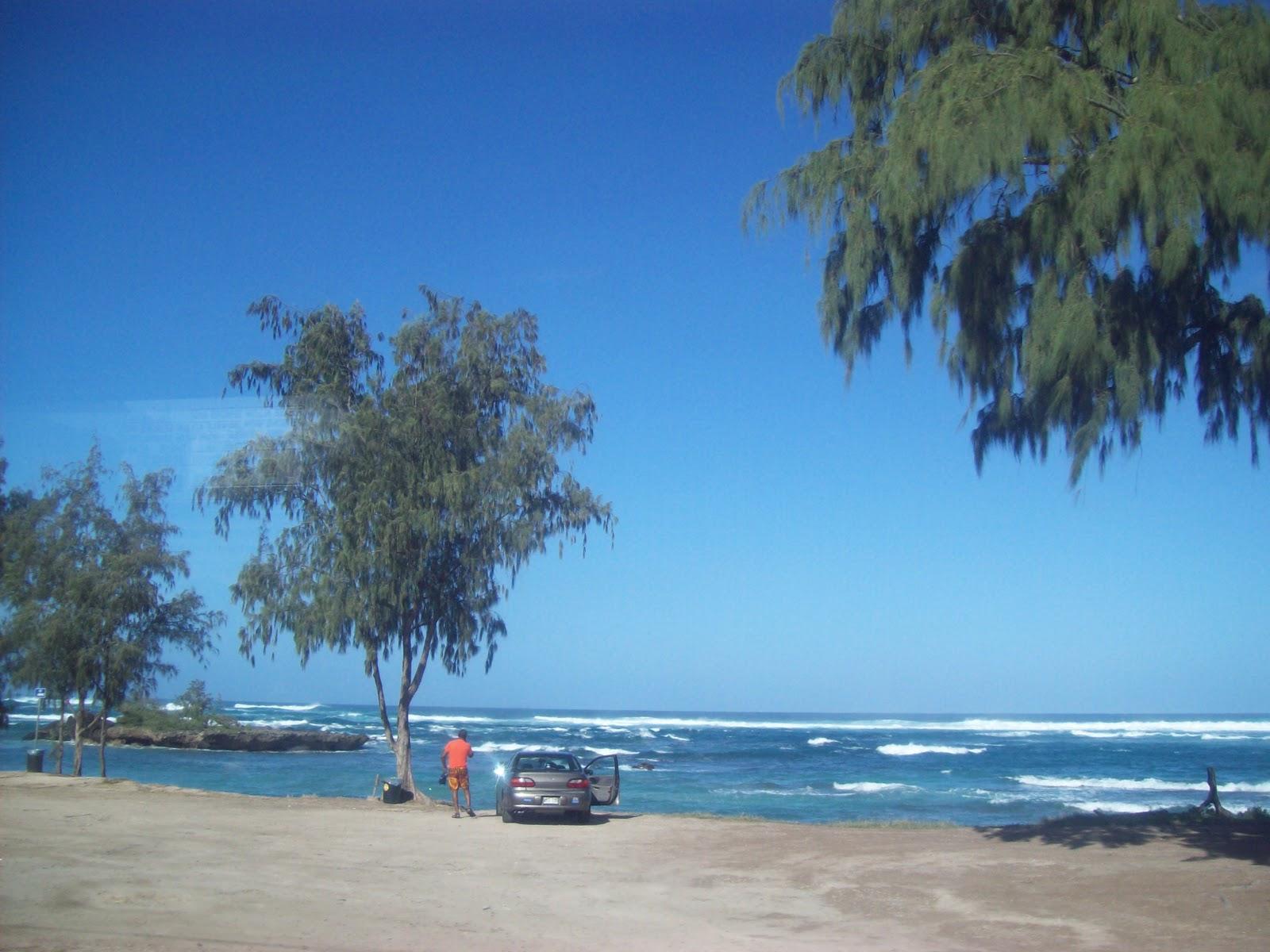 Hawaii Day 3 - 100_6955.JPG