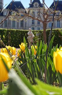 tulipes-cheverny-1©S-Clamens