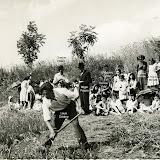 1950-fauchage.jpg