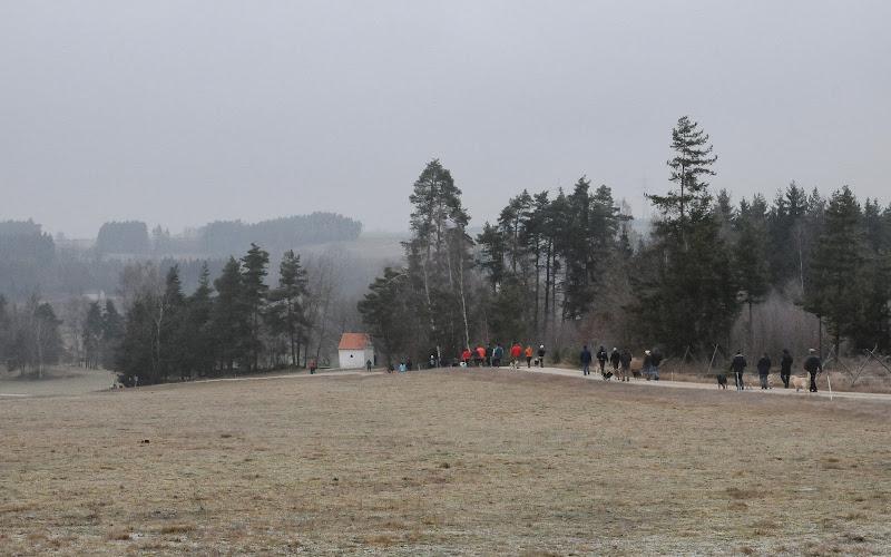 20140101 Neujahrsspaziergang im Waldnaabtal - DSC_9914.JPG