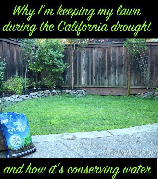 Why Im keeping my lawn during the California drought, and how I am actually saving water with GREENER grass!