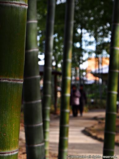 竹も道もふたりの時間も、長く長く続いていく