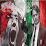 pirlo elmahalawy's profile photo