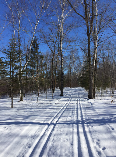 Start of Rootin Tootin trail