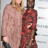 WWW.ENTSIMAGES.COM -      Jodie Kidd and Alex Wek     at          Harper's Bazaar Women of the Year Awards at Claridge's, Brook Street, London November 5th 2013                                        Photo Mobis Photos/OIC 0203 174 1069