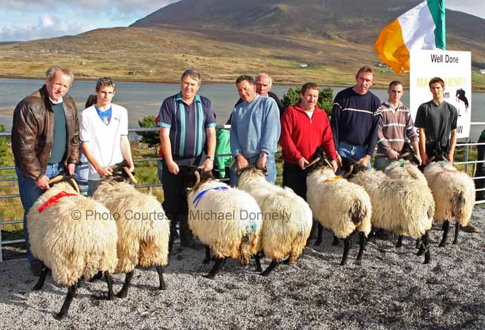 Winners of the Pen of 2 Aged Sheep (Open) at the 21st Achill Sheep Show (Taispeántas Caorach Acla 2007) at Pattens Bar, Derreens Achill were from left 1st Pat Vesey assisted by Michael Davitt, The Valley; 2nd Padraic O'Malley assisted by Tom Davitt; 3rd John Nolan and Pat Chambers and 4th Mark Davitt and Paul Davitt. Photo: © Michael Donnelly