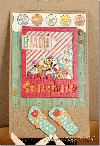 beach shaker