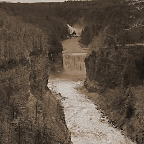 View from Inspiration Point in Letchworth State Park by Joe Spandrusyszyn - Landscapes Mountains & Hills ( letchworth, park, gorge, high falls, state park, waterfall, trees, forest, bridge, middle falls )
