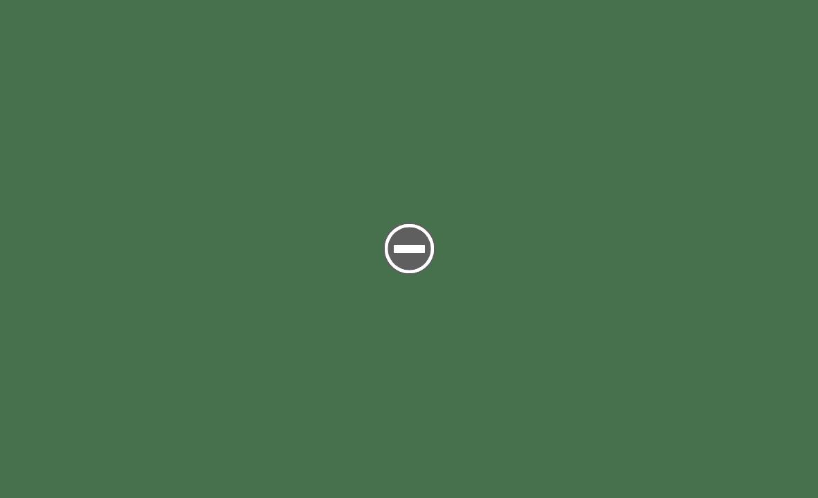 Travalong rasoir de voyage des années 1940s IMG_1809%2B%28Custom%29