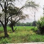 Area where the James Gleaves Turk Family lived Waynesboro, Virginia