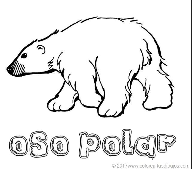 [osos-polar--124]