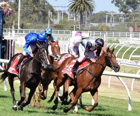 race 7_blue diamond_finish 5