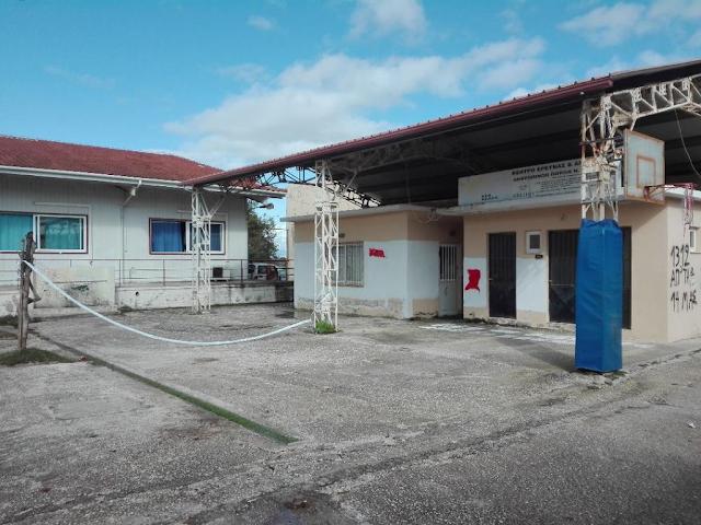 Πρέβεζα: Εστία κινδύνων ο προαύλιος χώρος του Μουσικού Σχολείου Πρέβεζας