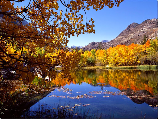 Eastern Sierra in Autumn, California.jpg