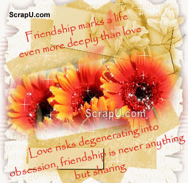 Friendship Flower Comments