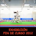 EXHIBICIÓN FIN DE CURSO 2013