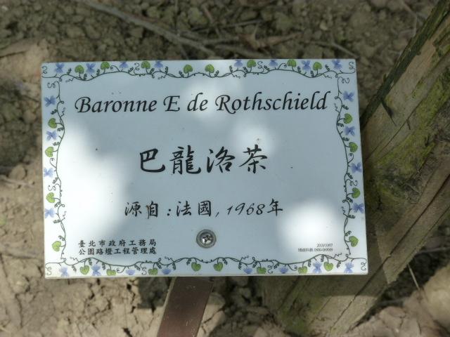 TAIWAN.TAIPEI, shilin une des villas de CKS dans un ancien parc botanique et autres vues - 1sichuan%2B011.JPG