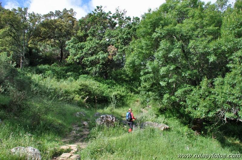 La Sauceda - El Aljibe - Laguna del Moral