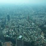 view of Taipei 101 in Taipei, T'ai-pei county, Taiwan
