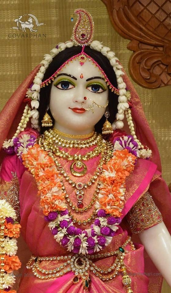 ISKCON Wada Deity Darshan 14 June  2016 (9)