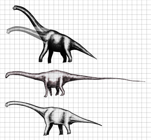 Die größten Sauropoden - Seite 2 Largest_of_the_large