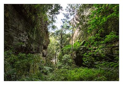 Natur pur im Pirituba Canyon - In der kleinen Schlucht