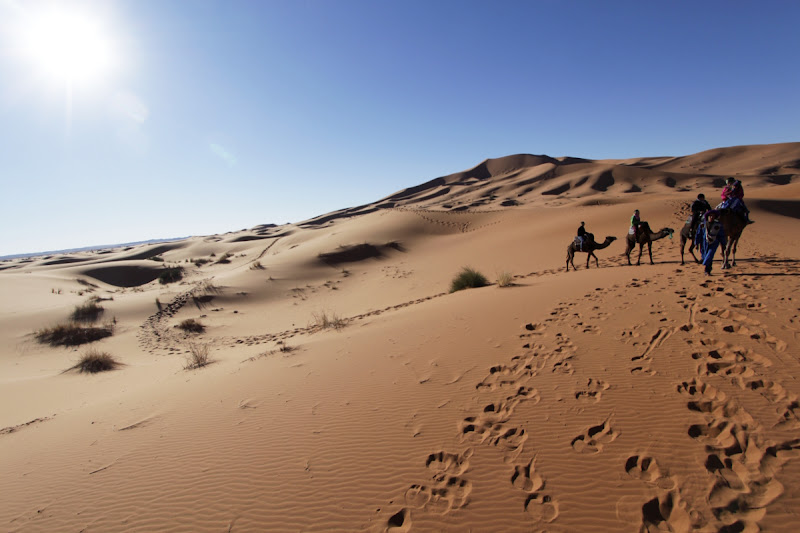 Caravana en Erg Chebbi (Sahara de Marruecos)