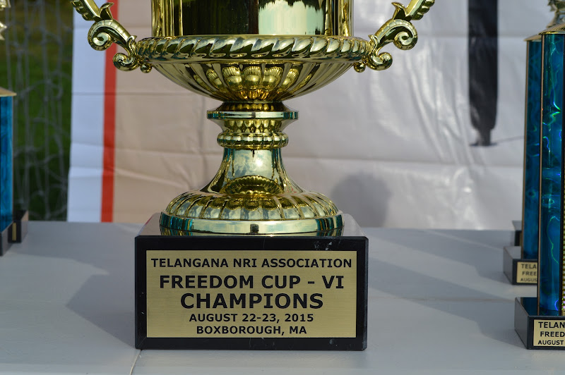 TeNA Freedom Cup Volleyball Boston 2015 - DSC_0764.JPG