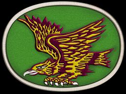 파일:attachment/육군 특수전사령부/여단/1SFB.png
