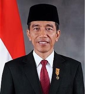 bentuk dukungan pemerintah terhadap developer aplikasi digital indonesia
