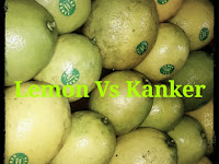 Air lemon bisa menjadi Obat Kanker yang murah dan lebih menghemat uang.