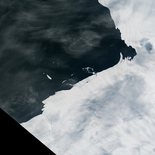 Aerial view of an iceberg calving from Pine Island glacier, 26 January 2017. Photo: NASA