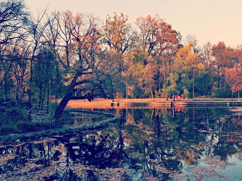 toamna lac parc crang buzau