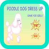 Poodle Dogs Dress Up