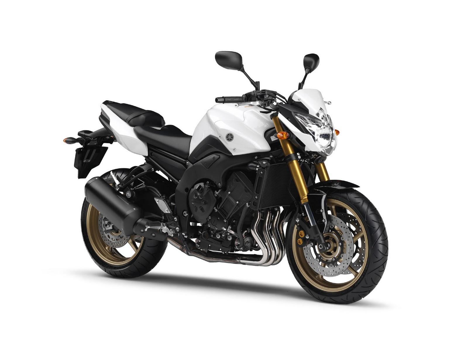Yamaha Fz Motorcycle