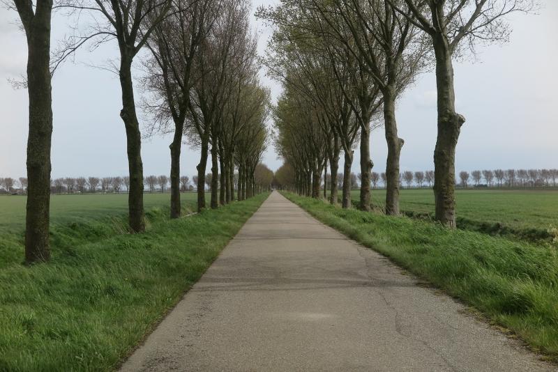 Weekend Noord Holland 2016 - IMG_6393_800x534.JPG