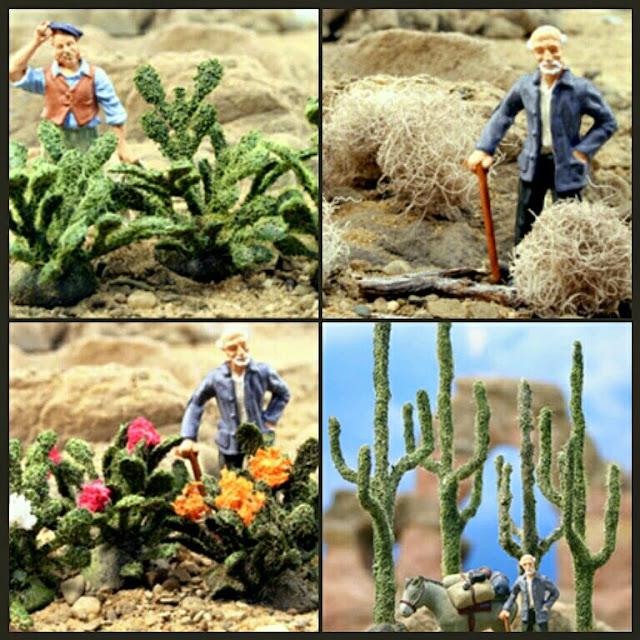 cactus Scenic Express