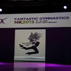 Fantastic gymnastics.jpg