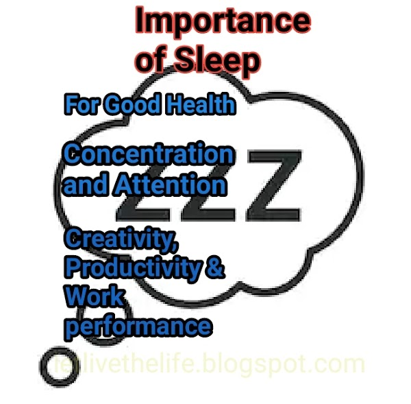 What Everyone Ought To Know About Sleep! • Success City